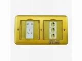 品牌:飞利富 Feilifu&#10名称:双联隐藏式地面插座&#10型号:HTD-1102