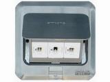 品牌:西蒙 Simtone&#10名称:不锈钢面两位电脑+电话地面插座&#10型号:TD120-F26H